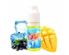 Grosella Negra Mango - Fruizee (10ml)