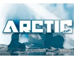 Arctic Attraction - Drops (30ml)